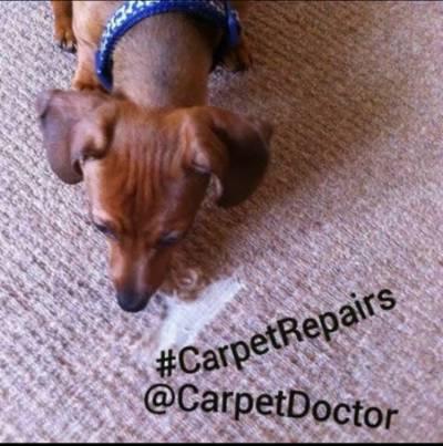 Carpet repair - Carpet Doctor